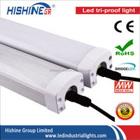 Best price led batten light fitting 277v america markets with 3 years warrant