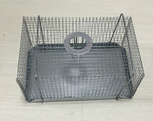 Eco-freiendly rat trap cages Galvanized Iron catch cage steel wire trap cages for rabbit