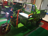 2016 YF newest green three wheel tricycle for cargo