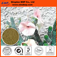 Hoodia gordonii Extract uses as Food/Pharmacy/Feed additives
