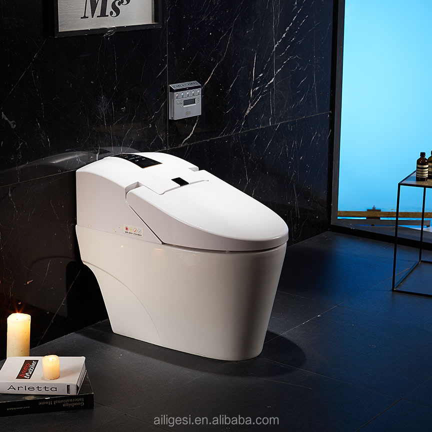 Automatic Sensor Dual Flush Integrated Intelligent Toilet ZJS-05