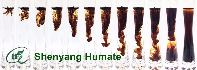 """HuminRich"" Potassium Humate Factory in China Acid Fulvic Super K-Humate"