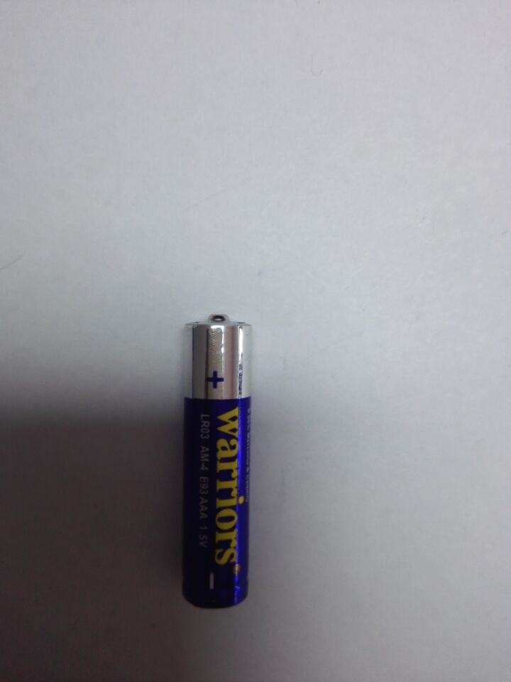 blue Alkaline AAA Battery