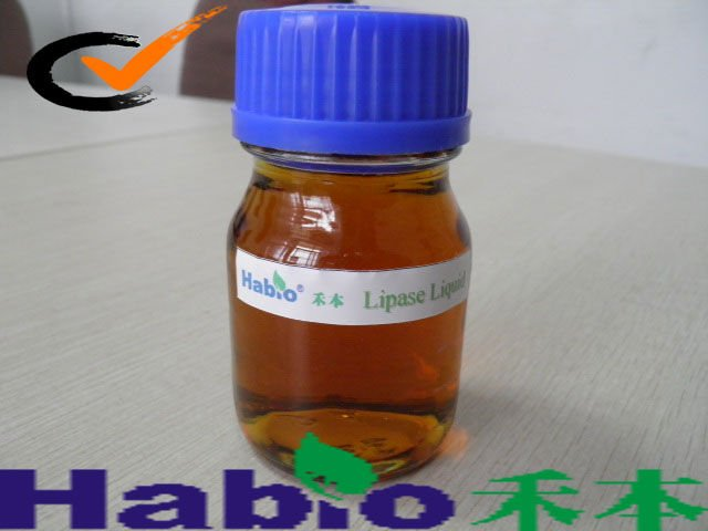 Hot!!! Sell Industrial Biodiesel Lipase