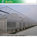 Timber Frame Lean to Greenhouse Rubber Seals for sale