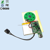 2015 New customized playback voice module/sound chip/music chip with audio message