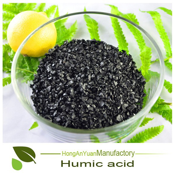 Humic Acid 70% Leonardite Granular/powder Organic Turf Fertilizer For Agricultural Use