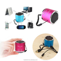 Portable Mini Speaker support MP3 FM radio speaker with TF Card USB flash drive
