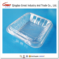 High Quality Small Transparent Clamshell Plastic Food And Fruit Packaging Box/Container