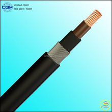 Customized 0.6/1KV~26/35KV 1.5~500mm2 XLPE Insulated Power Cable