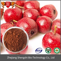 Factory supply Natural Hawthorn Berry Extract, Fruit Leaf Extract
