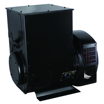 Low Speed Single Phase 200Kw Generator Head For Sale