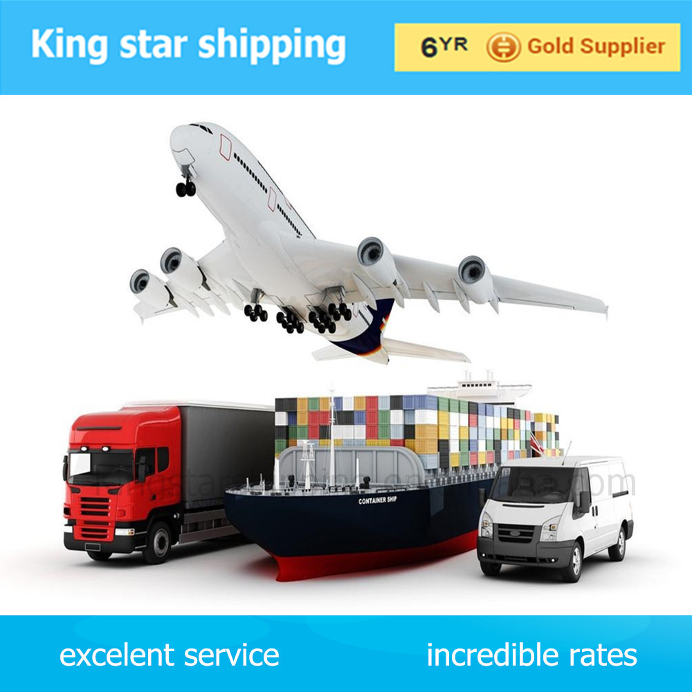 shipping forwarder evergreen shipping line from china guangzhou