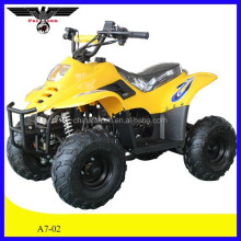 110cc Racing Quad Bike Atv for sale (A7-02)