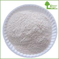 New crop HALAL KOSHER standard garlic powder