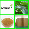Natural Organic Lotus Leaf Extract,Lotus Leaf Extract Powder,slimming tea