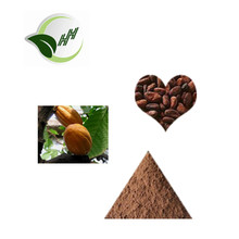 100% pure high quality Cocoa extract theobromine powder