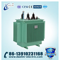 Enclosed 6kv 1000kva 3-Phase Distribution Power Transformer