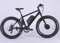 Fat Tire Middle Motor Electric Mountain Bike Cheap Wholesale Bicycles For Sale Sales