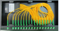 "FTTH PON 19"" 1U Rack mounted PLC Splitter 1x32 for CATV"