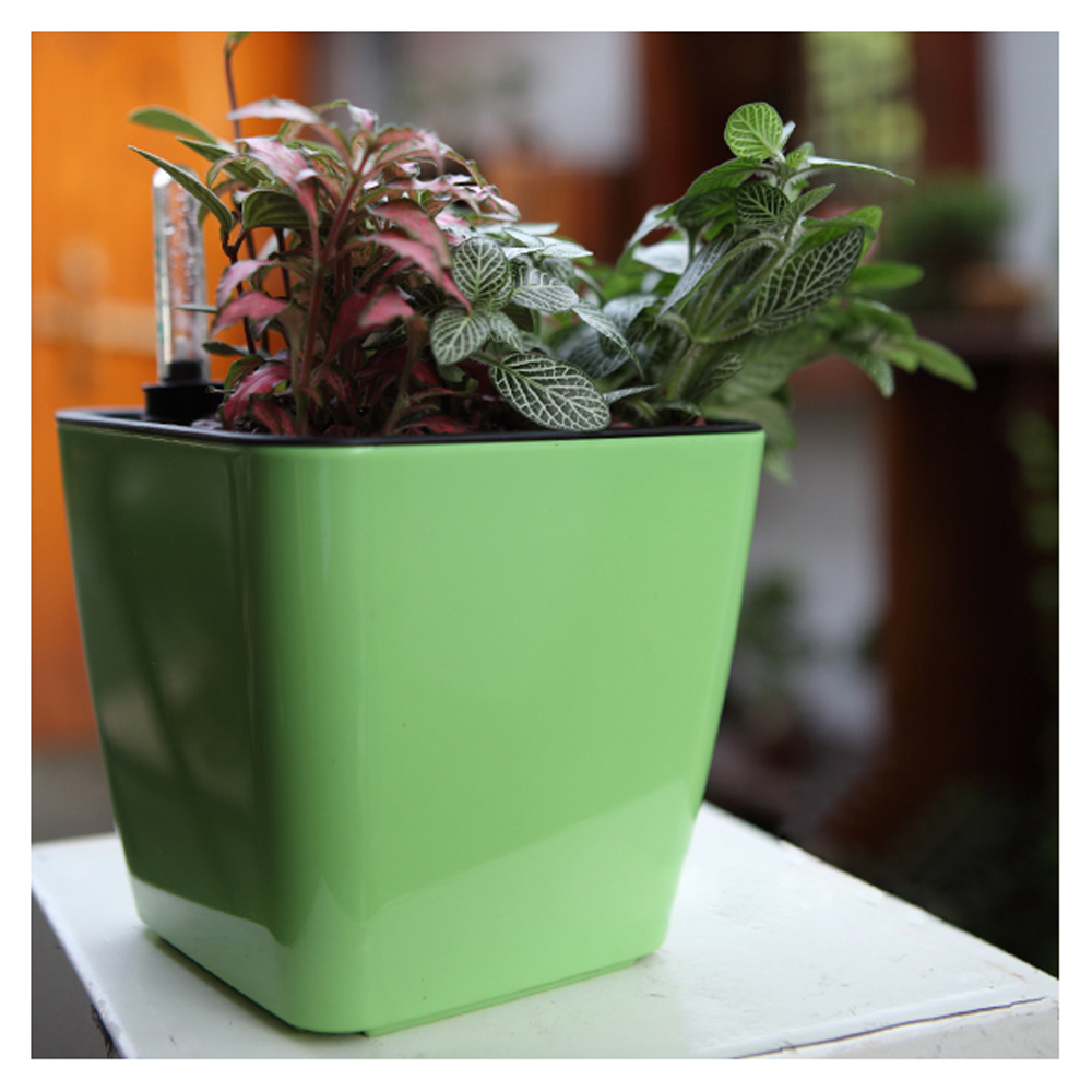cup shaped ceramic flower pot