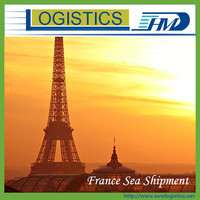 Auto spare parts from Ningbo/Shanghai/Guangzhou/Shenzhen to Le Havre France--Skype:sunnylogistics102