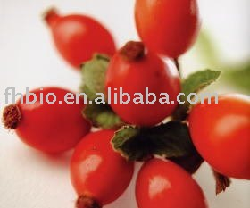 Rose Hip Extract As Laxative