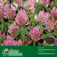 Healthcare herbal supplement ingredients red clover p.e. isoflavones,isoflavones powder