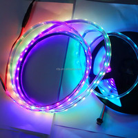 5m DC12V WS2811 240LEDs (16ixes/m) full color led digital strip;IP66;waterproof in silicon tube;BLACK PCB