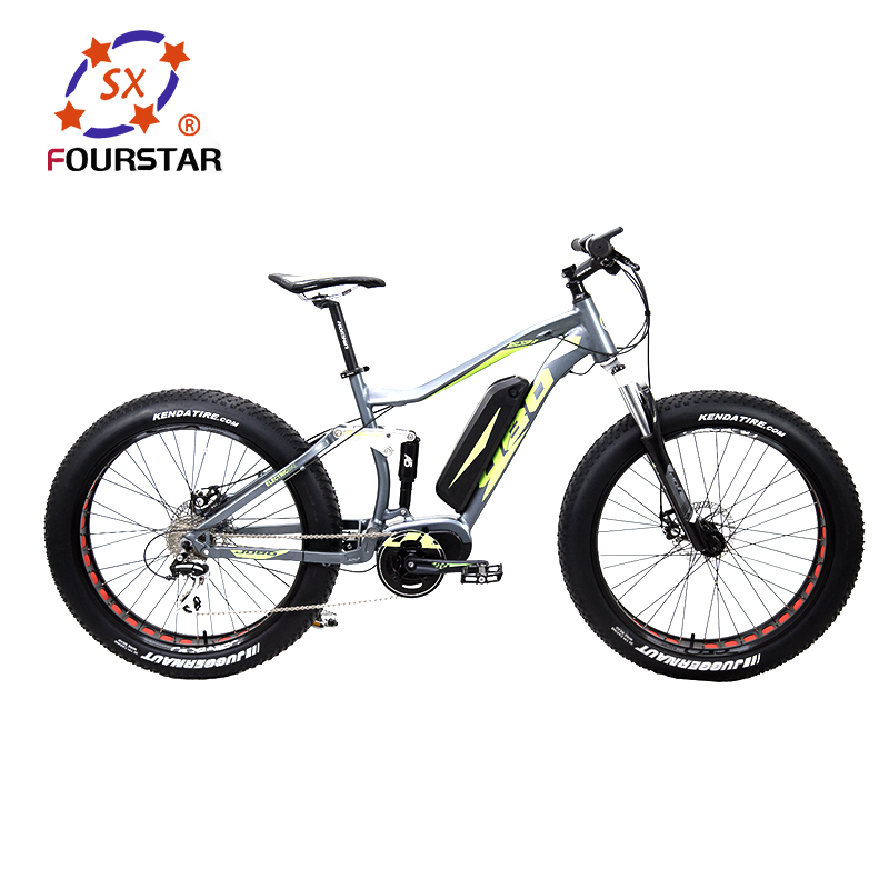 High Performance 48v/1000w importer electric bicycle for adults