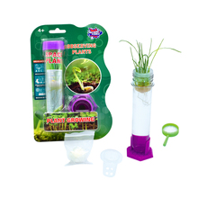 Fun STEM toys for kids education science kit plant growing kit for kids