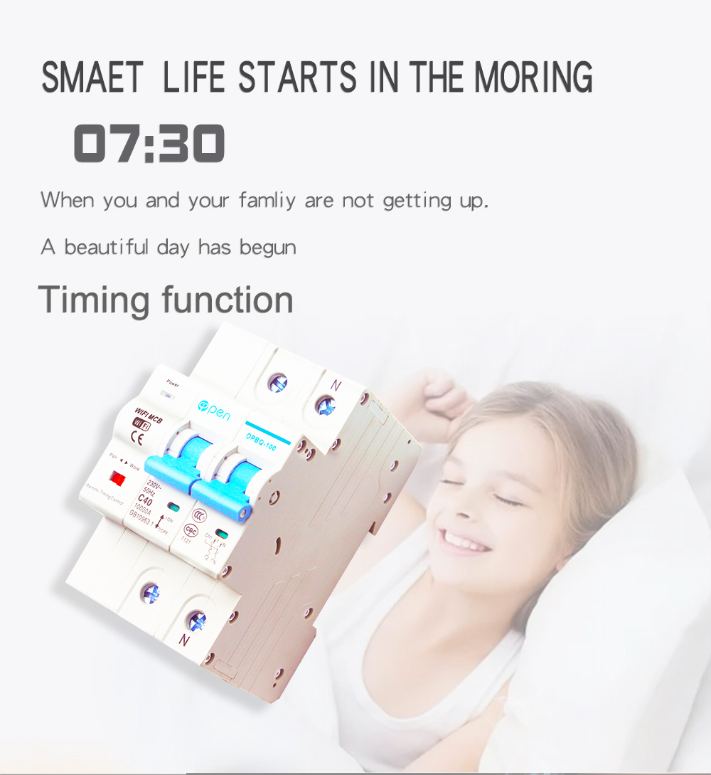 Tuya Smart Life 2P 40A Remote Control Wifi Circuit Breaker /Smart Switch overload ,short circuit protection for Smart home