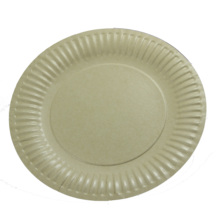 Safe and Eco- friendly disposable paper plates
