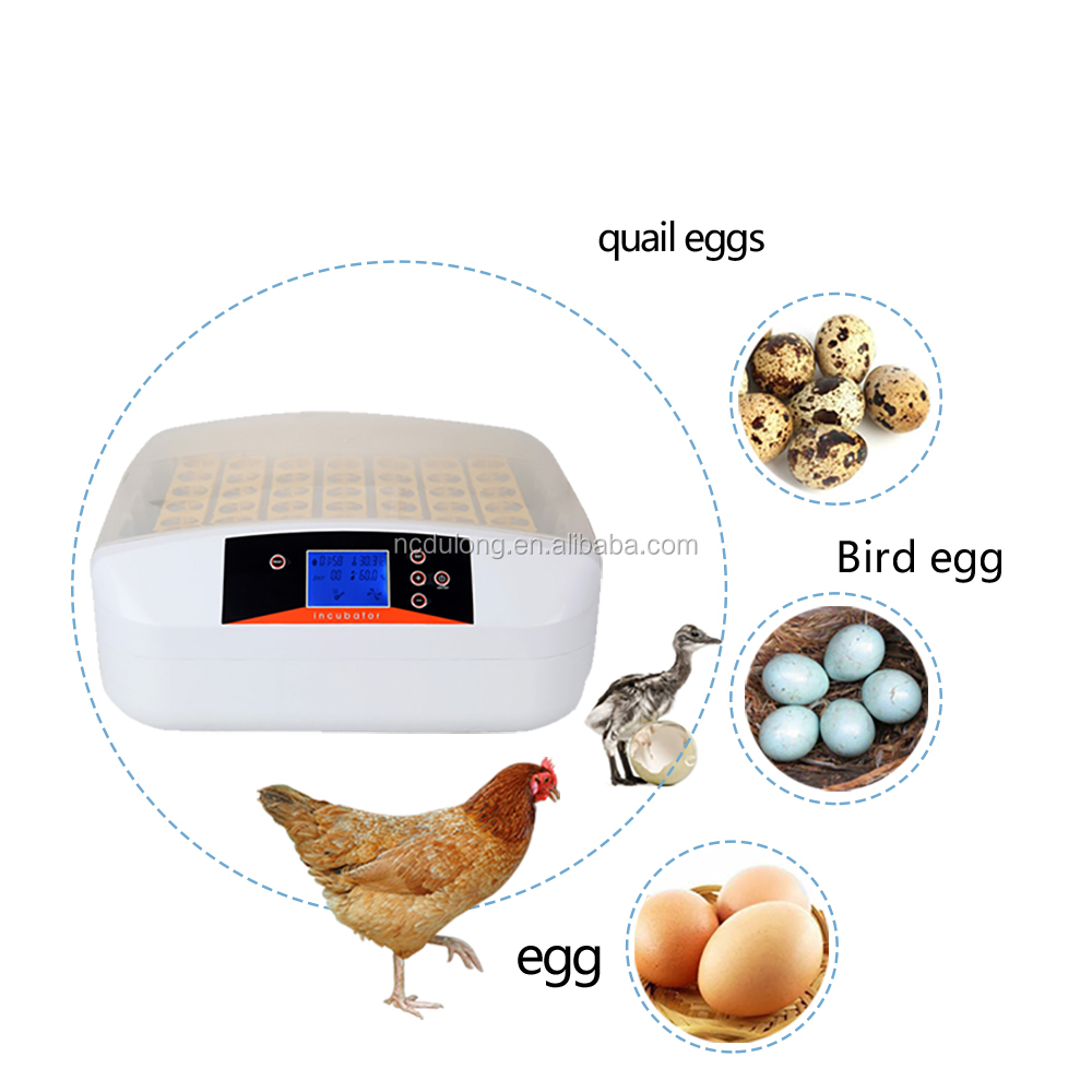 56 eggs automatic mini home poultry incubator hatcher egg incubator chicken brooder