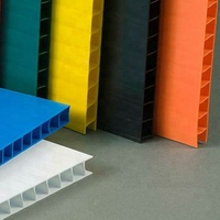Plastic Corrugated Board/Coroplast sheet with customized colors and sizes for packing protection