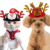 Factory Direct Sales Dog Cat Small Animals Christmas Party Decoration Hat Santa Claus Antlers Styling Popular Christmas Hat