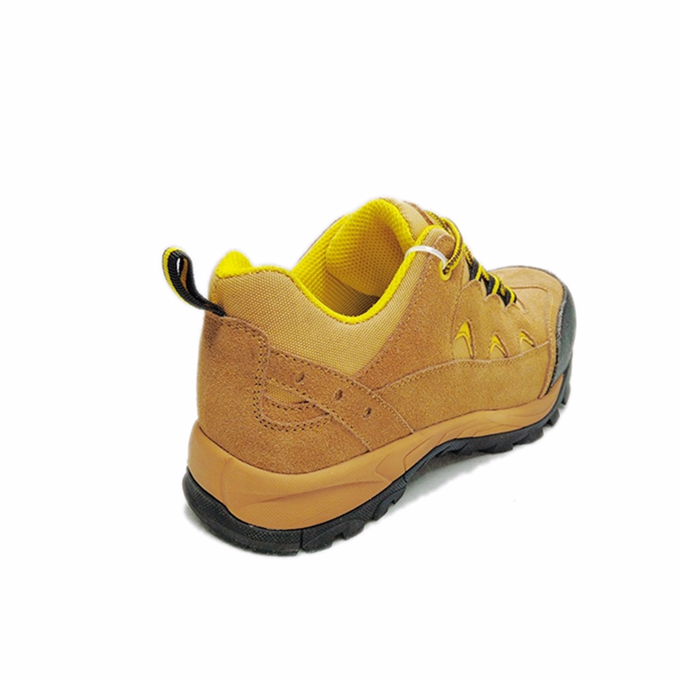 Brand New Safety Shoes Sri Lanka With High Quality