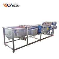 Water circulation lettuce tomato strawberry leaf vegetable and fruit air bubble washing machine