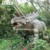 Dinosaur Picture Name Mechanical Equipment Dinosaur