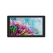 12inch 1280x800 widescreen LCD display for MP4 file
