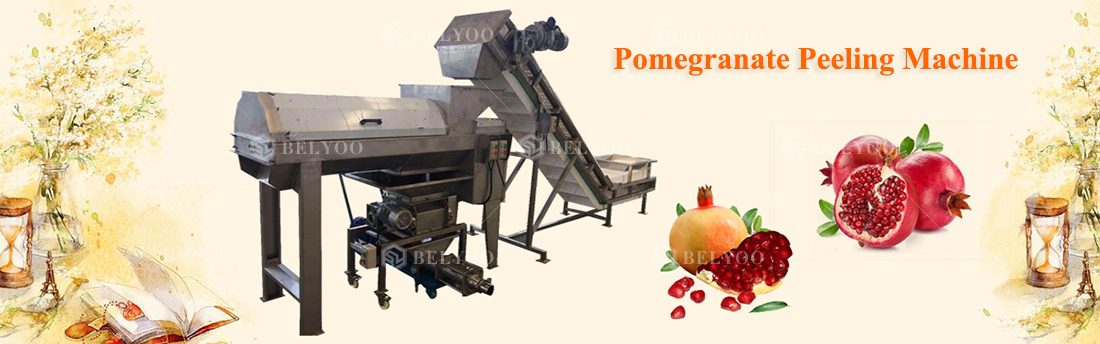 Stainless steel pomegranate seeds removing machine price peeler pomegranate seed and skin separating machine for sale