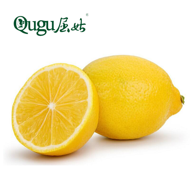 <strong>orange</strong> style citrus fruit fresh lemon Eurake lemon for sale