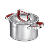 QANA 2020 EUROPE READY TO SHIP MARCH 2RD TO 31TH SINGLE STAINLESS STEEL COOKING POT IN RED SILICONE HANDLE 28*16.5cm