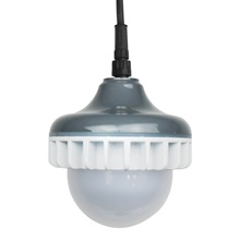 Waterproof Dimmable Poultry LED Lighting <strong>Bulb</strong> for Layer Broiler Chicken Farm
