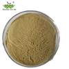 /product-detail/factory-supply-high-quality-100-natural-garlic-extract-dehydrated-garlic-extract-powder-garlic-extract-powder-62339129504.html