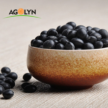 Agolyn kindney factory directly sale Black Bean