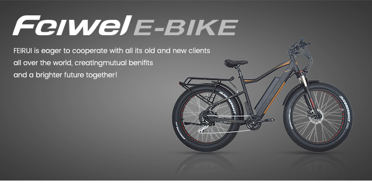 Cheap And High Quality 48v500w fat tire electric bike Fat  tire electric folding bike fat tire e bike