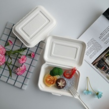 biodgradable food packing boxes disposable food <strong>container</strong>