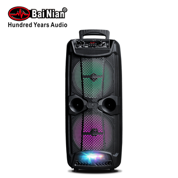 "PA Speaker Double 8""Trolley Active Speaker Sound System with Built in Rechargeable Battery FM Radio USB SD Slot DC12V REC"