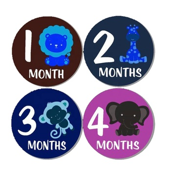 Good Quality Custom Cute Baby Monthly Milestone Stickers